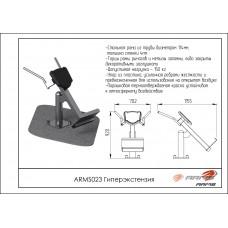 ARMS023 Гиперэкстензия