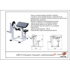 AR019.3 Бицепс-трицепс маятниковый